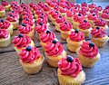 Remembrance Day Poppy Cup Cakes.jpg