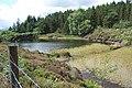 Reservoir West of Llyn Sarnau - geograph.org.uk - 212084.jpg