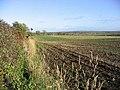 Rich farmland near Hilton - geograph.org.uk - 277302.jpg