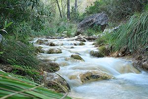 River Chillar, Málaga, Andalucia, Spain