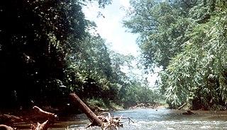 Río Plátano Biosphere Reserve biosphere reserve in Honduras