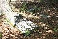 River Creek WMA cemetery 4.jpg