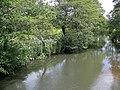 River Rother near Ambersham - geograph.org.uk - 1337992.jpg