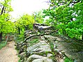 Rock - panoramio (26).jpg