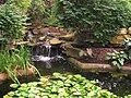 Rodef Shalom Biblical Botanical Garden - IMG 1331.JPG