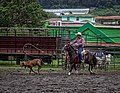 Rodeo Event Calf Roping 45.jpg