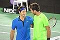 Roger Federer and Juan Martin del Potro (8366842637).jpg