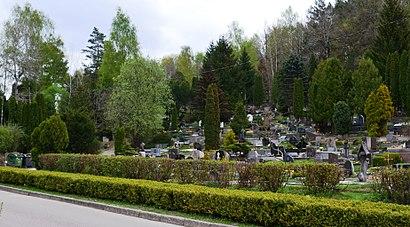 Kaip pateikti į Rokantiškių kapinės viešuoju transportu - Apie vietovę