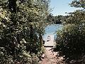 Round Pond dock.agr.jpg