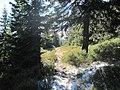 Ružomberok, Slovakia - panoramio (36).jpg