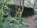 Ruined Cottage in Pentraeth Forest - geograph.org.uk - 322912.jpg