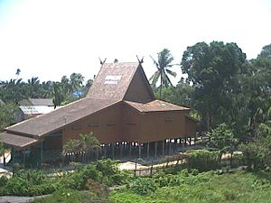 "Architecture of Madagascar - This house in South Kalimantan bears many of the iconic construction features brought from Borneo to Madagascar two thousand years ago: wood plank walls, piles to raise the house from the ground and a steeply sloping roof topped with crossed gable beams to form ""roof horns."""