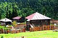 Rural Adjaria (14530460080).jpg