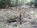 Russenbunker Dippoldiswalder Heide.jpg