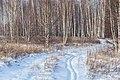 Ryazansky District, Ryazan Oblast, Russia - panoramio (128).jpg