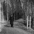 Säveltäjä lähdössä kävelylle keväisenä päivänä valkovuokkojen kukkiessa. Jean Sibelius, 1940-1945, (D2005 167 6 90) Suomen valokuvataiteen museo.jpg