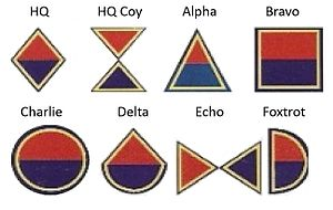 South African Army Engineer Formation - SANDF Engineers Company emblems