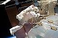STS-133 EVA2 Steve Bowen 5.jpg