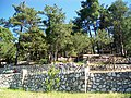 Saklı gölde piknik longuner - panoramio.jpg