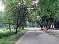 Salimgarh Fort 131.jpg