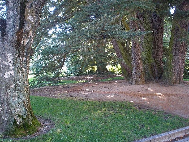 File san ildefonso palacio real de la granja jardines for Jardines granja de san ildefonso