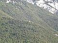 Sant Feliu de Riu des del Salt de la Núvia (maig 2011) - panoramio.jpg