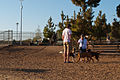 Santa Monica Airport Park (5896556092).jpg