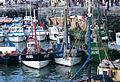 Sardiniers dans le port de La Rochelle.jpg