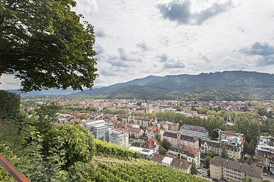 Schlossberg Freiburg.jpg