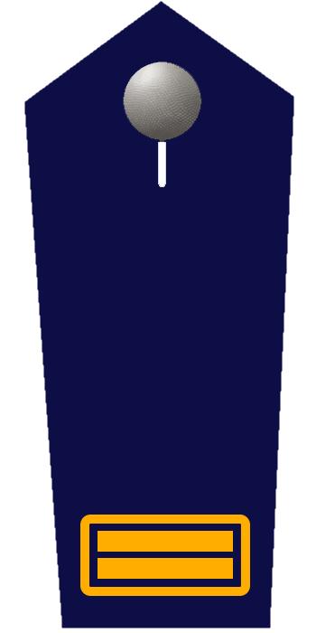 Oberbrandrat/-rätin