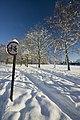 Scunthorpe Central Park footpath - geograph.org.uk - 2185200.jpg