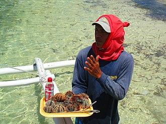 Boholano people - A Boholano man holding a Sea urchin delicacy.