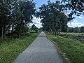 Seaside Rail Trail, Plymouth MA.jpg