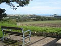 Seat with a view - geograph.org.uk - 914745.jpg