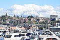 Seattle - Ben Lomond and environs.jpg