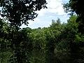 See am Holderweg im Oberwald, Karlsruhe - panoramio.jpg