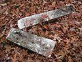 Shady Grove Cemetery Memphis TN 2012-12-09 004.jpg