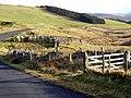 Sheepfold Near Mountherrick - geograph.org.uk - 341668.jpg