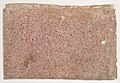 Sheet with an overall red speckle pattern Met DP886829.jpg