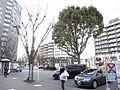 Shin-tokorozwa-station-west-trafficplace 2014-02-7 2014-02-18 13-20.jpg