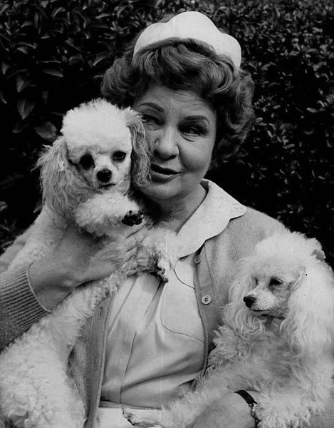 File:Shirley Booth Hazel 1964.JPG