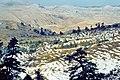 Sierra de las Nieves 1975 10.jpg