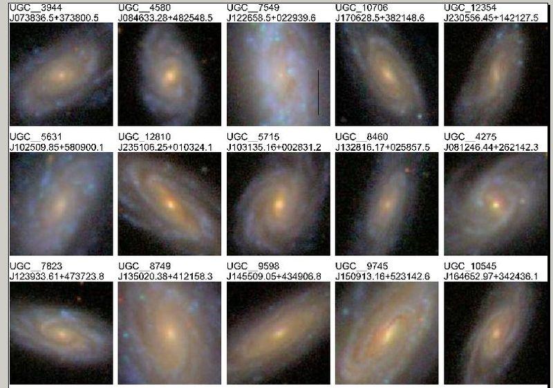 Similar stellar distribution in spiral galaxies.jpeg