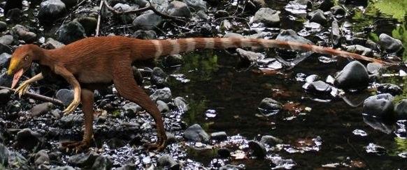 Sinosauropteryx NT