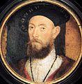 Sir Nicholas Carew.jpg