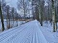 Ski track in Roihuvuori, Helsinki, Finland, 2021 January.jpg