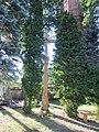 Skiemonys 29223, Lithuania - panoramio (3).jpg