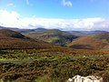 Sleamaine, Co. Wicklow, Ireland - panoramio (3).jpg