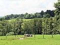 Sloping grassland above Brede valley - geograph.org.uk - 451700.jpg