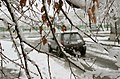 Snowy day in Mashhad (2 851009 L600).jpg